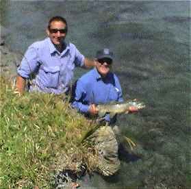 Angling report Jan 2003 Kingfisher Lodge fly fishing reports Lake Brunner